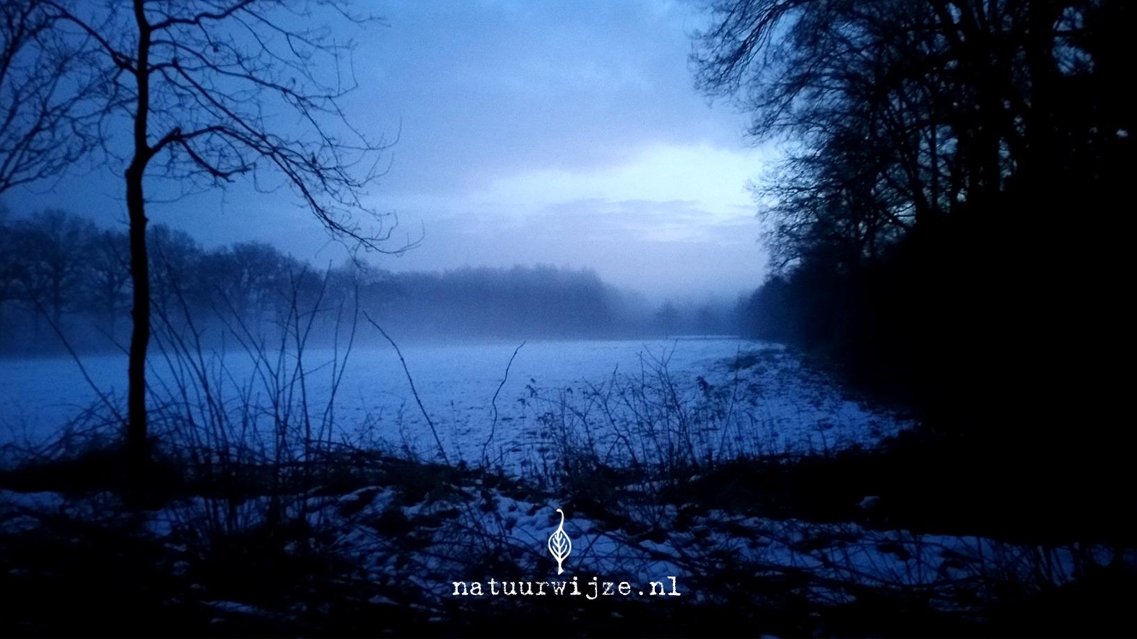 Winter ochtend wandelen sneeuw mist
