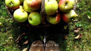 nooit meer appelallergie