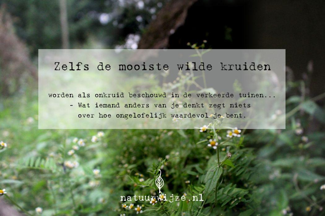 quote blog waardevol tuin
